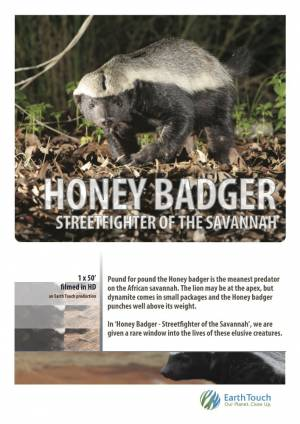 National Geographic. Жизнь одного медоеда / Ultimate Honey Badger