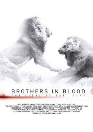 Discovery. Прирожденные короли / Brothers in Blood: The Lions of Sabi Sand